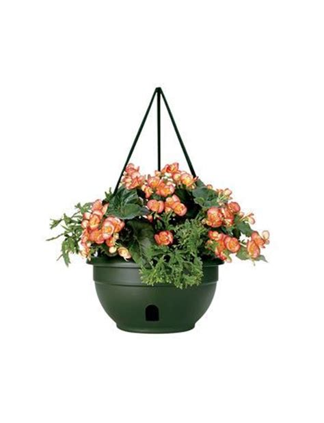 self watering hanging baskets a patented dual action wick