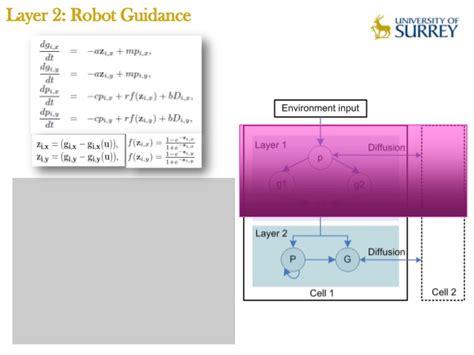 pattern formation algorithms morphogenetic multi robot pattern formation using