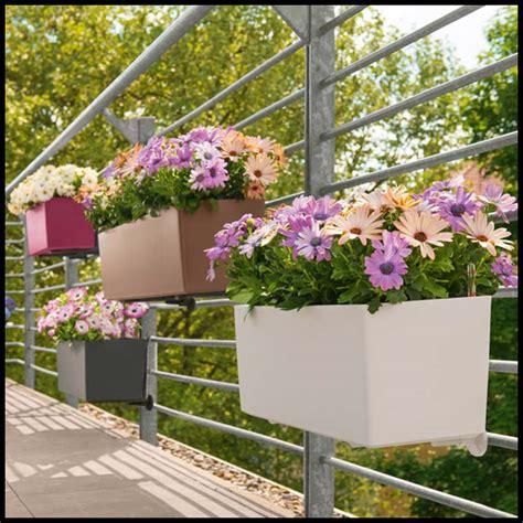 Self Watering Window Planters by Basswood Self Watering Window Box Planters Hooks Lattice