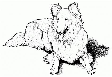 real dog coloring pages search results calendar 2015