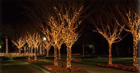 tree lights melbourne tree lights melbourne 28 images lights at wickham park
