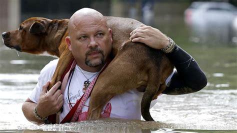 imagenes impactantes historicas fotos las inundaciones hist 243 ricas en houston texas tele 13