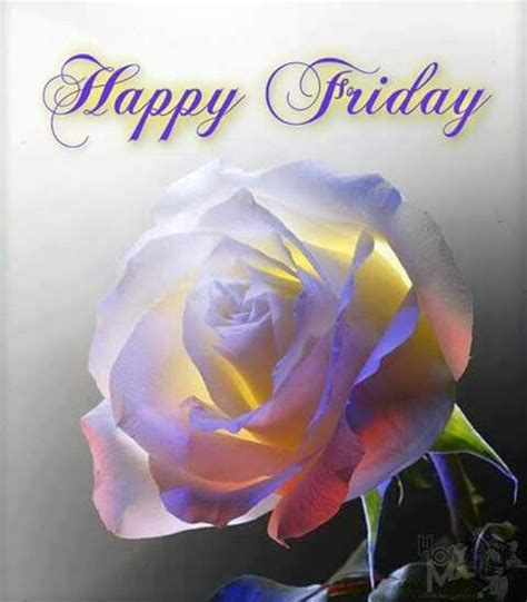 Happy Friday Floral Finds by Happy Friday Flower Pictures Photos And Images For
