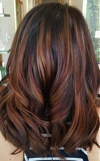 fall highlights for brown hair best 25 hair color for brunettes ideas on pinterest