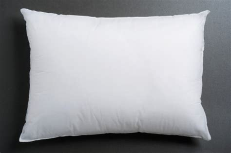 white goose surround pillow