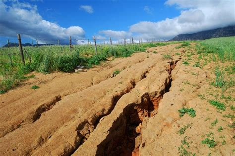 Soil Erosion Essay by Bad Exle Of Erosion Soil Conservation Contemp Issues