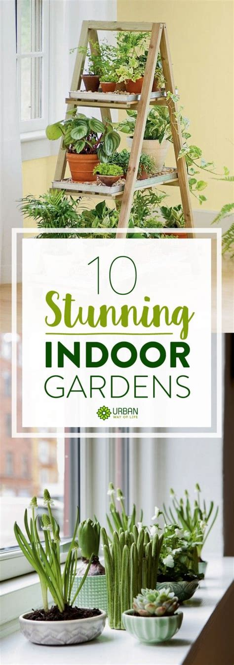 indoor gardening ideas 25 best ideas about indoor gardening on