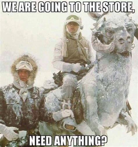 Memes About Snow - while you re all freezing your asses off leia shaw s