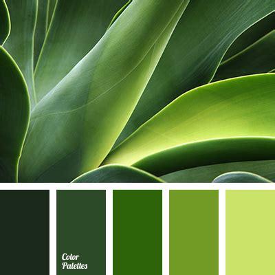 green combination color bright light green color combination color of greenery