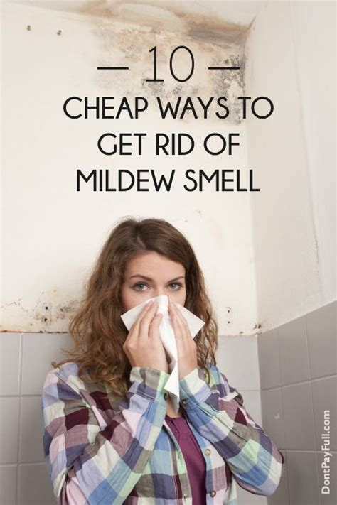 how do i get rid of musty smell in basement 10 cheap ways to get rid of that awful mildew smell to