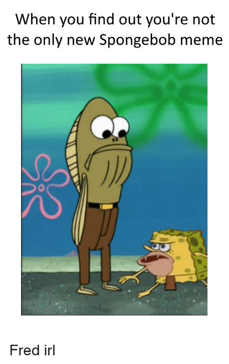 Fred Meme - funny spongebob memes of 2016 on sizzle fire