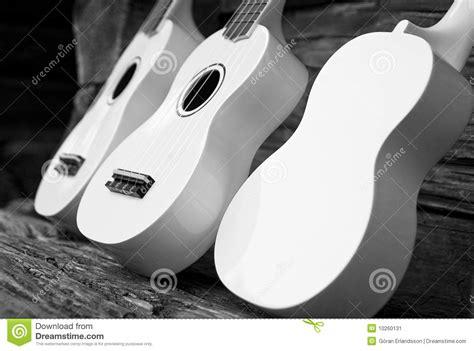Imagenes Guitarras Blancas   guitarras blancas imagen de archivo imagen 10260131