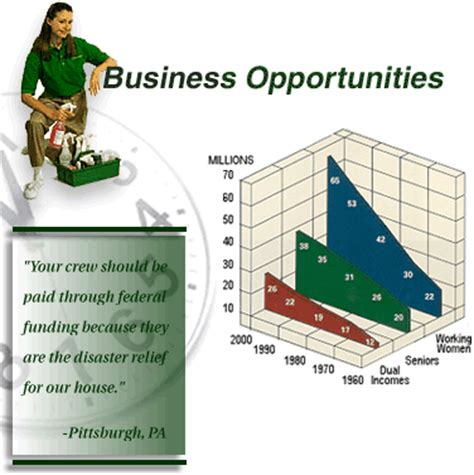 merry maids franchise business franchising opportunity