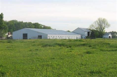 boarding louisville windswept farm boarding farms in louisville ohio