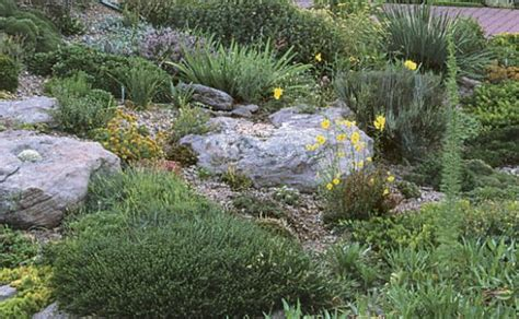 How To Start A Rock Garden Rock Garden Primer Finegardening