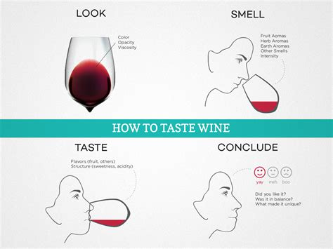 learn how to your how to taste wine and develop your palate wine folly