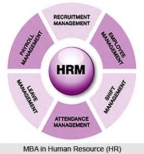 Mba System Management Scope by Mba In Human Resource Hr