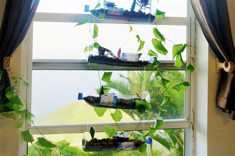 Hanging Herb Planters by How To Build A Hanging Bottle Garden For Free Youtube