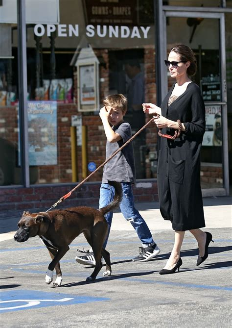 puppy store los angeles takes and dogs to the pet store in los angeles celebzz celebzz