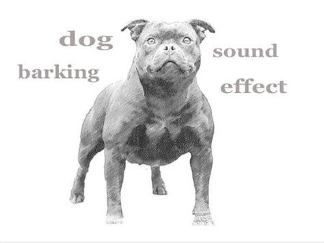 dog barking sound effect the animal sounds dog barking sound effect animation youtube