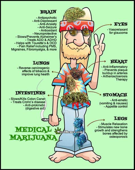 Marijuana Memes - weed fun meme s needed weedbloggerkarenroguski