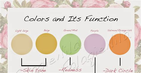 Makeover Camouflage Concealer Palette Murah how to use your camouflage concealer palette wisely the