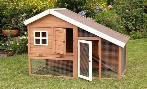 backyard ducks housing duck housing question backyard chickens