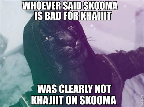 Khajiit Meme - image gallery khajiit meme
