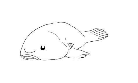 blob fish coloring page blobfish lineart by artisticpuppy on deviantart