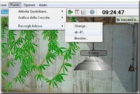 coltivare marijuana in vaso come coltivare cannabis al pc con il simulatore highgrow 4
