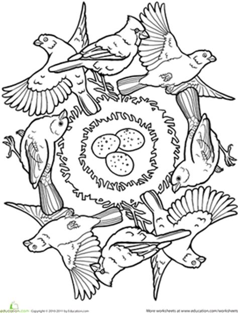bird mandala coloring pages birds coloring coloring pages
