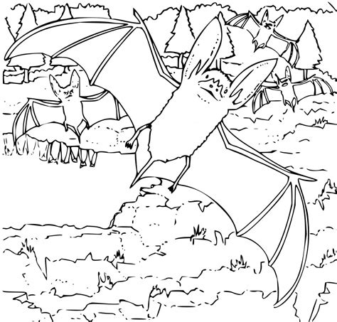 free printable bat coloring pages for kids free printable bat coloring pages for kids