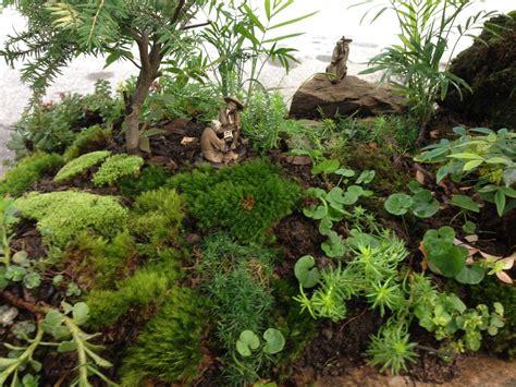Mini Japanese Rock Garden Japanese Zen Rock Garden Mini Decorating Clear Model 16 Chsbahrain