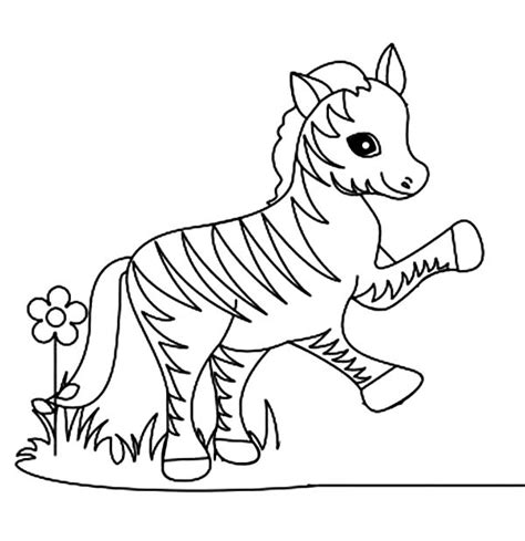 zebra fish coloring page free a zebra fish coloring pages