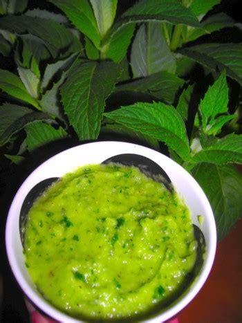salsa di sedano rapa salsa di sedano rapa vegan ricette vegane