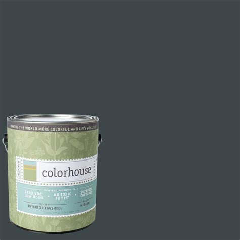 color house paint colorhouse 1 gal metal 06 eggshell interior paint 492561