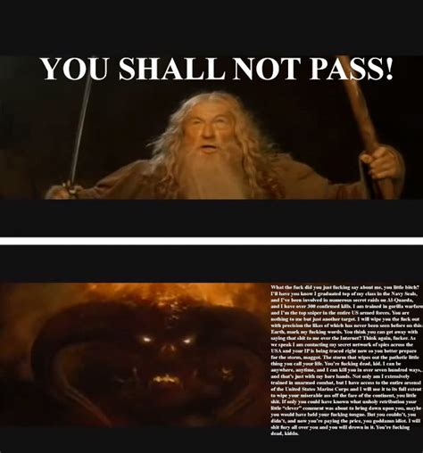You Shall Not Pass Meme - meme wars play risk online free warzone