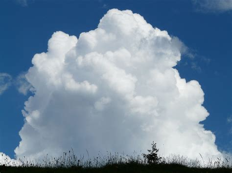 wallpaper awan cumulonimbus free photo cloud cumulus clouds cumulus free image on