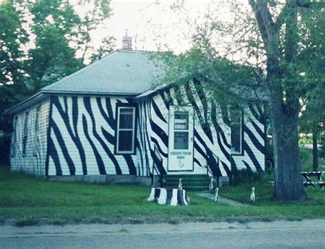 Tiger Stripes To Cow Spots 13 Playful Home Paint Jobs Urbanist