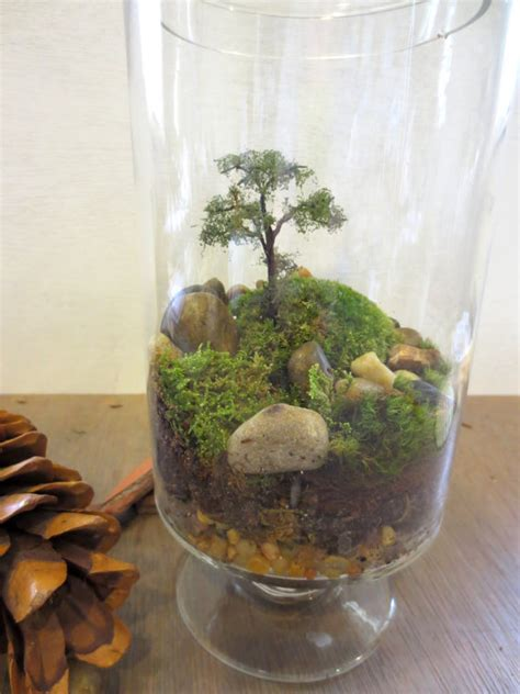 long ago and far away terrarium vibrant moss terrarium