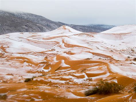 sahara desert snow first sahara desert snow in 40 years captured in