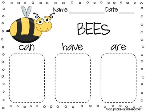 kindergarten activities bees writing about insects science pinterest