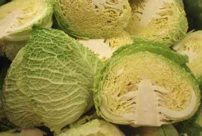 come si cucinano i crauti prevenire il cancro mangiando col cavolo giudizio