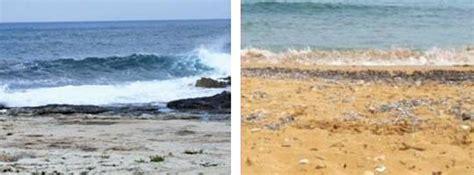 free printable sudoku splash zone one world habitats of the maltese islands 16