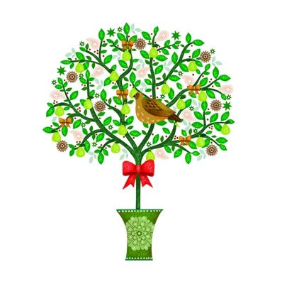 images of christmas partridge in a pear tree home design