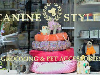 puppy store manhattan best 25 pet store display ideas on pet store pet shop and retail displays