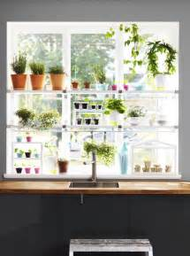 Window Herb Garden by Herb Garden In The Window Garden Tea Party Pinterest