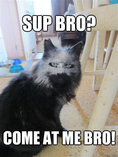 Sup Meme - sup bro memes