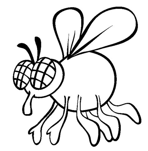 fly coloring page animals town free fly color sheet