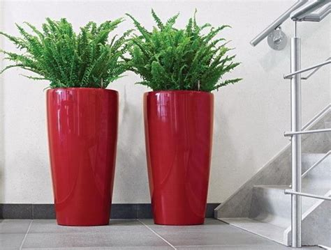 Ideas For Indoor Potted Plants Design Enhance Your Home Decor With Decorative Plants Ideas 4 Homes